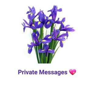 Other - Private messages can be left here 😊